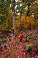 Little Boy Hiking Trail Autumn Leaves