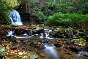 Fall Foliage Creek Waterfalls Leaves
