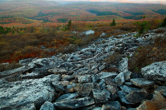 Autumn Rocky Mountainside