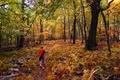 Little Hiker Fall Foliage Mountain Trail