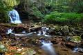 Fall Foliage Creek Waterfalls Leaves