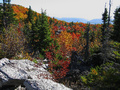 A wonderful mountain fall foliage view from high atop a beautiful mountain ridge in the autumn season.
