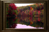 Fall Foliage Autumn Art Gallery